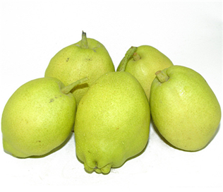 China Fragrance Pear
