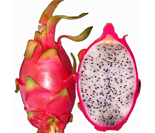 Thailand Dragon Fruit (White)