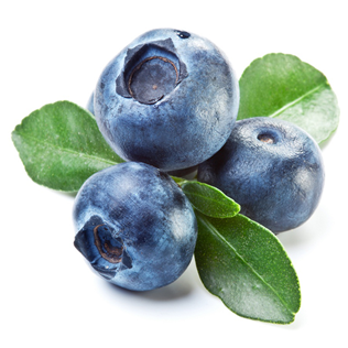 Chile Blue Berries